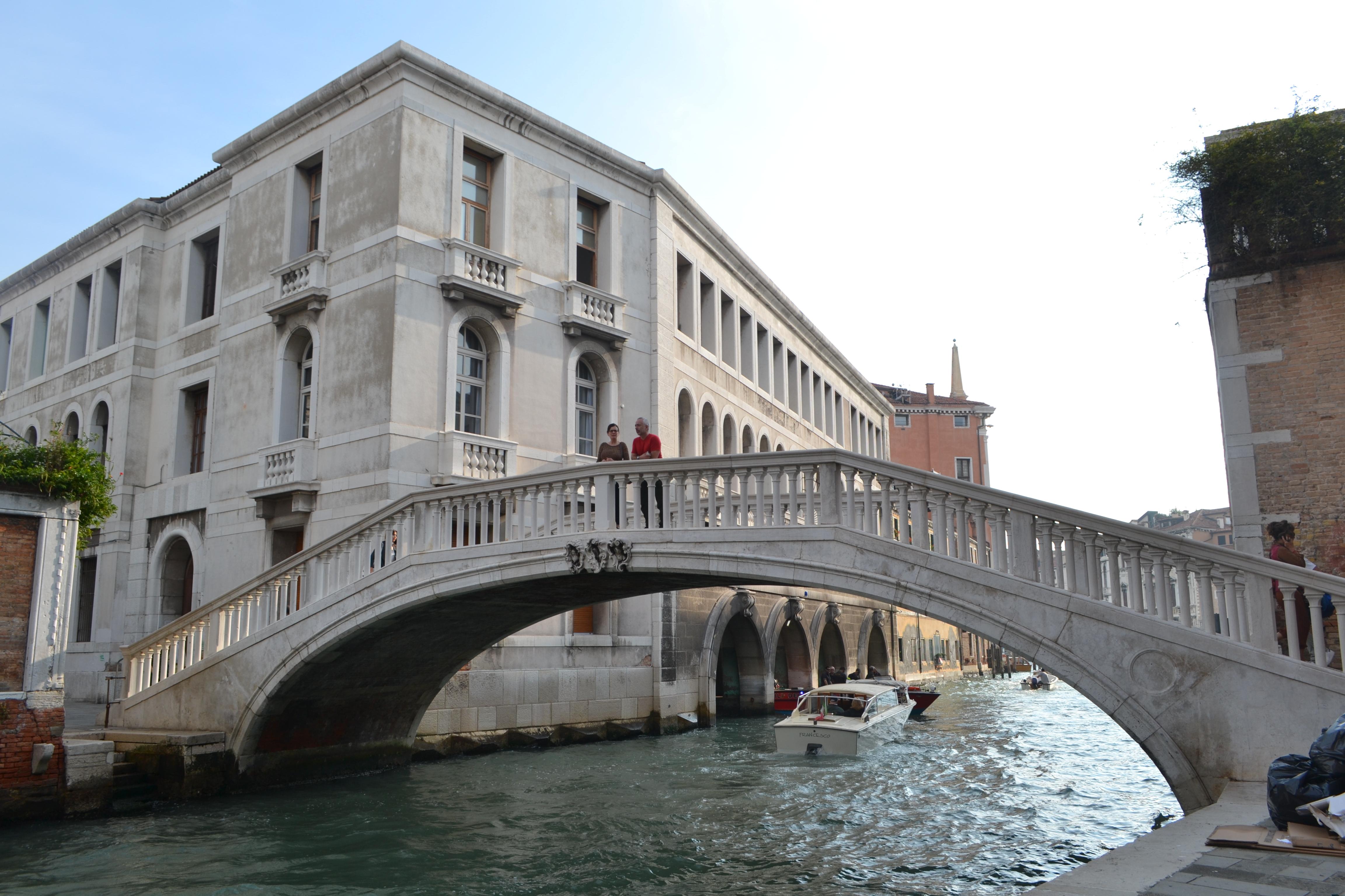bridge-dsc_0244