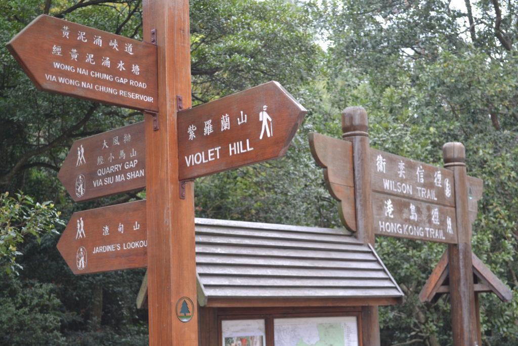 hiking DSC_0785