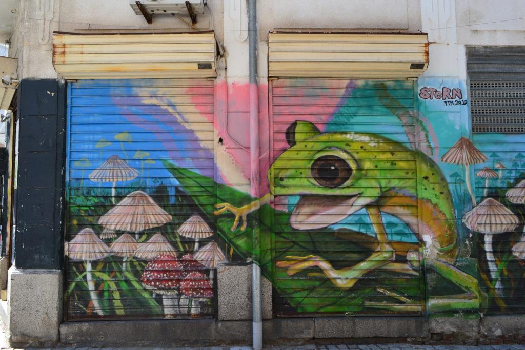 Street Art1 DSC_0046