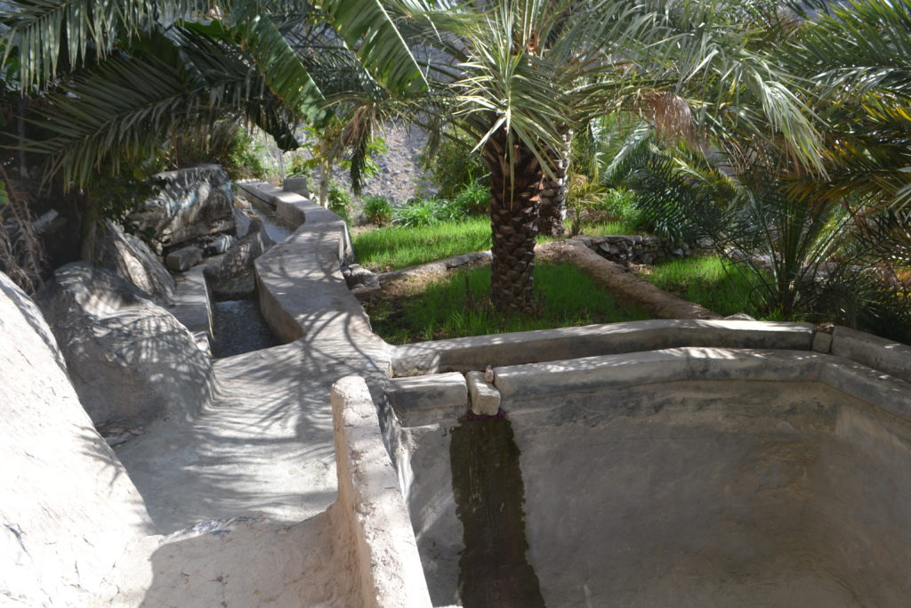 Aflaj irrigation system Oman UNESCO DSC_0973