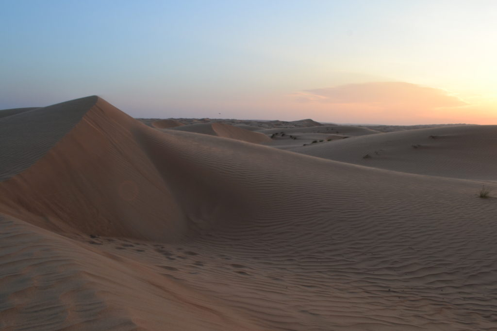Sharqiya Sands Desert Oman DSC_0246