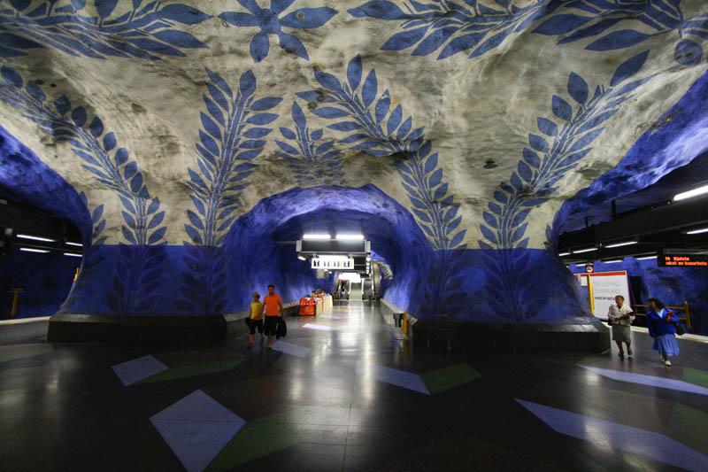 Image: stephmcg via Wikimedia Commons