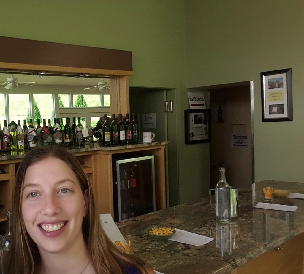 DelFosse Vineyards Tasting Room Best Charlottesville VA Wineries 20170610_121445 (2)
