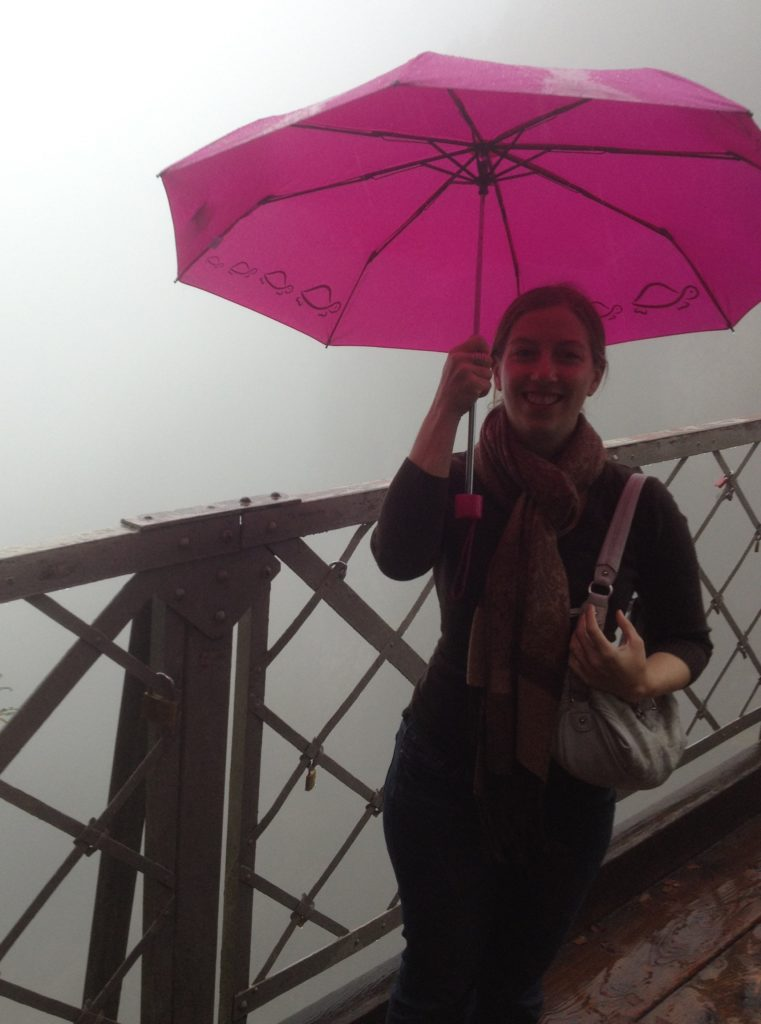It was a little foggy and rainy. You're *supposed* to be able to see the model for the Disney castle behind me.