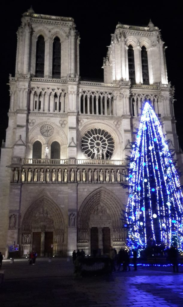 Notre Dame Cathedral Paris France Winter Bucket List How to Make the Most of the Season 20141229_234635 (2)