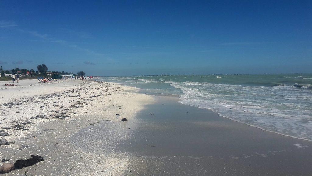 Sanibel Island Florida Shelling Travel Superlatives of 2017 To Inspire Your Next Adventure 20170125_132112 (2)